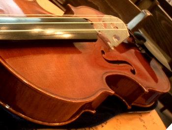 amber-violin01.jpg